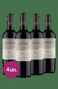 Kit Partridge Flying Cabernet Sauvignon 2020 (4 garrafas)