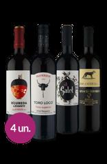 WineBox Famosos Espanhóis
