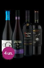 WineBox Versáteis