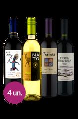 WineBox América do Sul dos Sabores