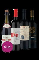 WineBox Conexão Europa e Chile