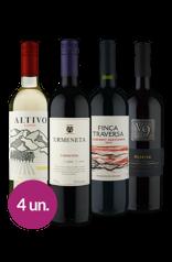 WineBox Sul-Americanos