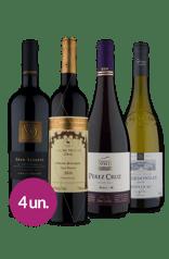 Kit Seleção Vinhos Maravilhosos (4 garrafas)