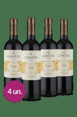 WineBox Canepa Reserva Famiglia Carménère 2018 (4 Garrafas)