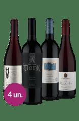 WineBox Descubra o Novo Tintos