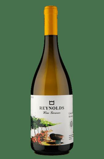 Carlos Reynolds Branco 2017