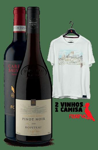 WineBox Franceses + Camiseta Off-White Aquarela França G