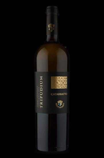 Tripudium I.G.P. Terre Siciliane Catarratto 2013