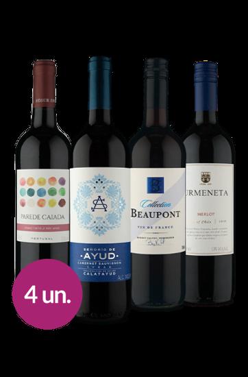 WineBox Equipe Tintos