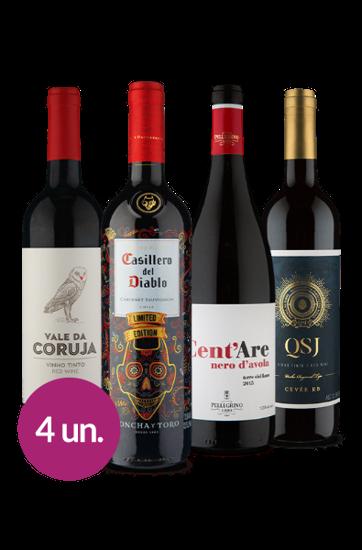 WineBox Paixão por Tintos