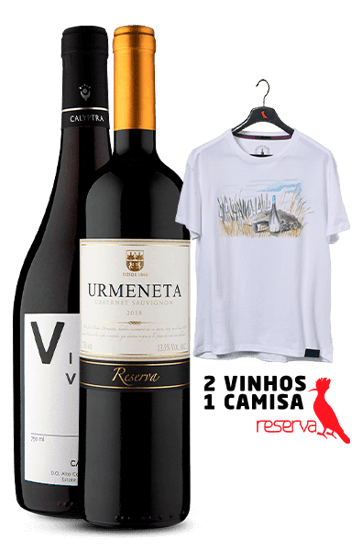 WineBox Chilenos + Camiseta Lilás Aquarela Chile P