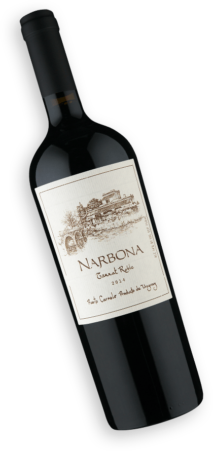 Narbona Roble Tannat 2014