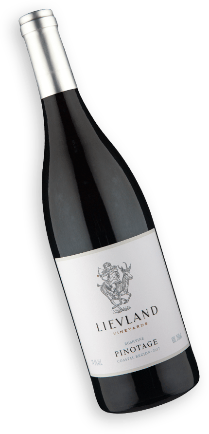 Lievland Vineyards Bush Vine Pinotage 2017