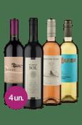 Kit Mix Sul-Americanos (4 garrafas)