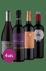 Kit Tintos Favoritos Mundiais (4 garrafas)