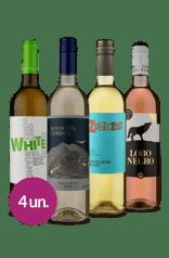 Kit Melhores Refrescantes Wine (4 garrafas)
