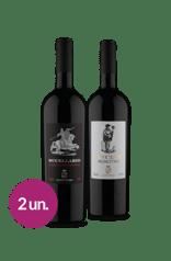 Kit Tintos Italianos  (2 garrafas)