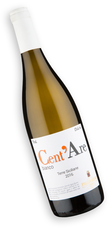 Cent`Are I.G.P. Terre Siciliane Bianco 2016