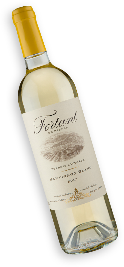 Fortant de France Terroir Littoral Sauvignon Blanc 2017