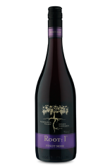 Root: 1 Casablanca Valley Pinot Noir 2018