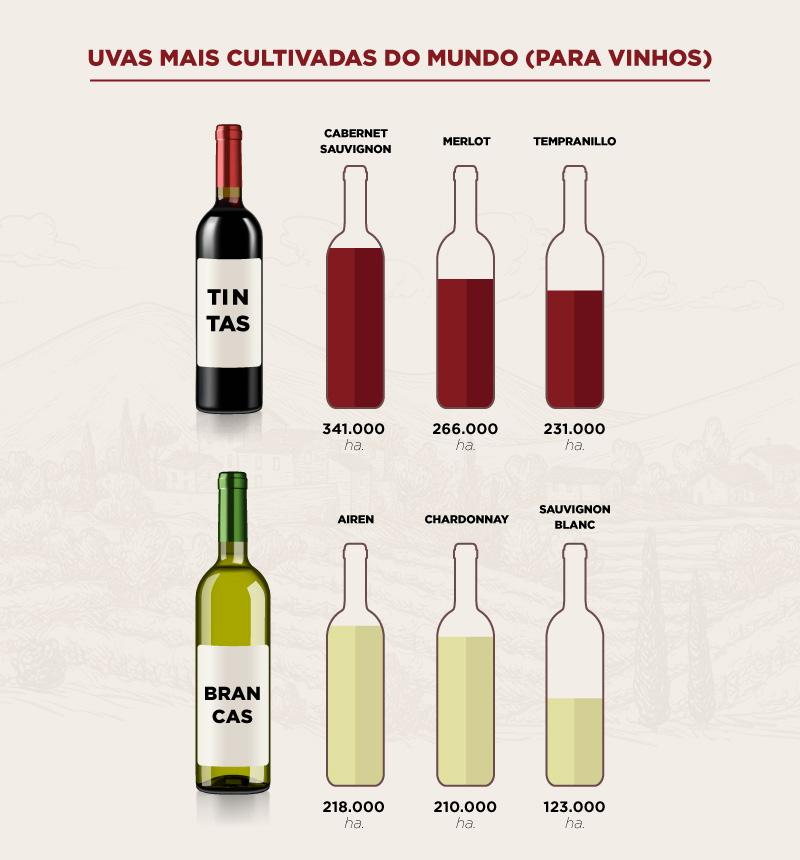 Tabela com as uvas para fazer vinhos mais cultivadas do mundo