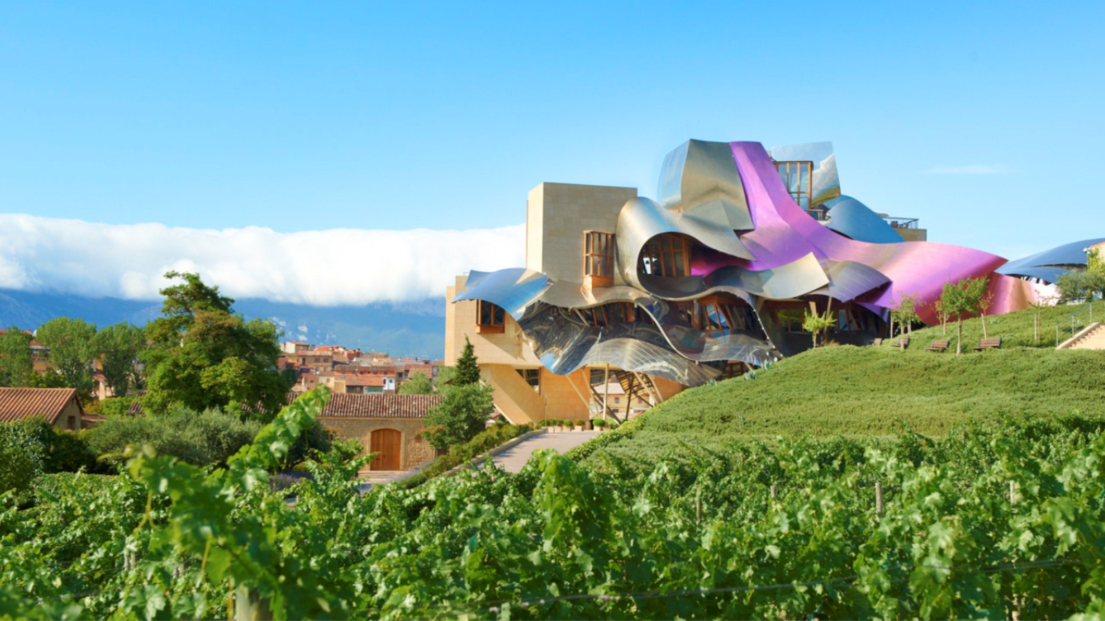 Marqués de Riscal - Restaurantes em meio a vinhedos